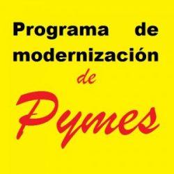 programa modernizacion de pymes